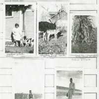 Allard family collage of farm land and Vernon Chase's family