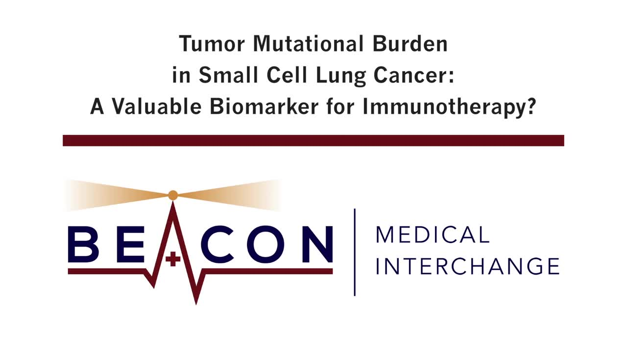 Tumor Mutational Burden in Small Cell Lung Cancer: A Valuable Biomarker for Immunotherapy? (BMIC-011)