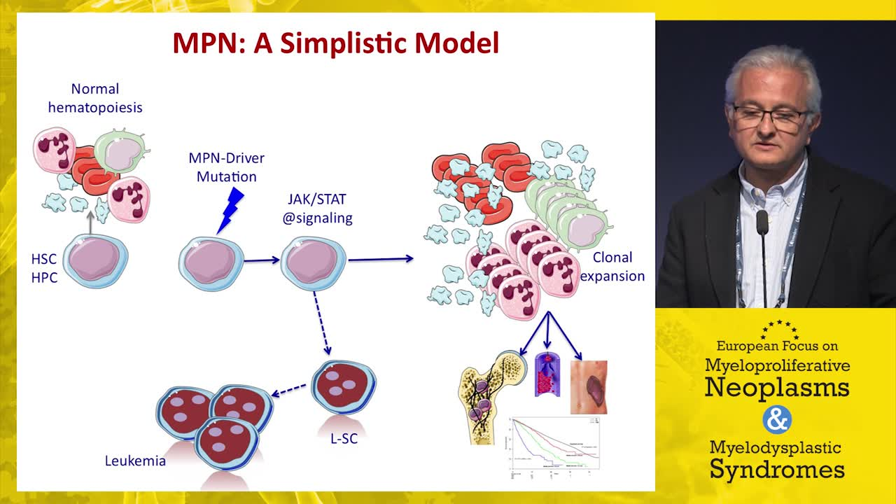 Experimental therapeutics in MPN: Where is the field going?