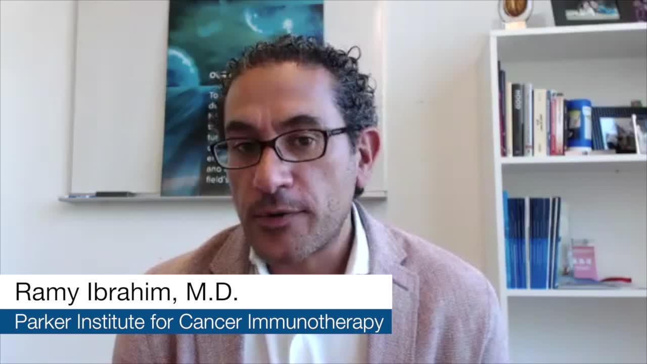 Gemcitabine + Abraxane - Standard for Pancreatic Cancer | Investigational Agents - Nivolumab-Anti-PD1 &  Anti-CD40