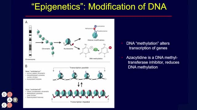Clinical Trial Spotlight_ Can Epigenetic Priming Improve Efficacy of Immunotherapy in NSCLC_ [360p]