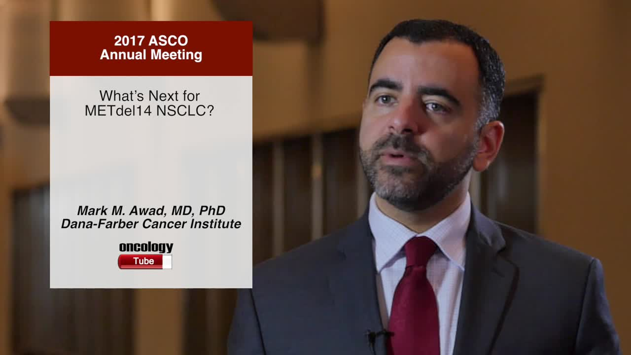 What's Next for METdel14 NSCLC?
