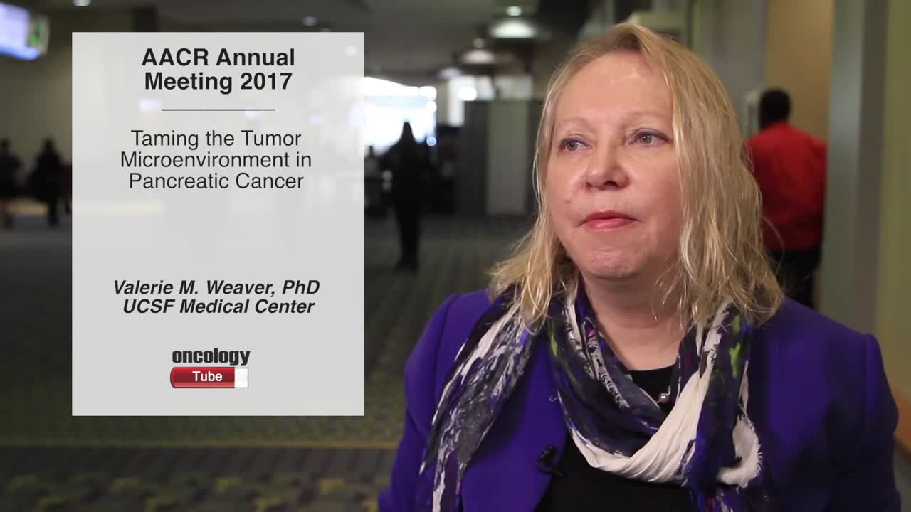 Presentation Overview: Taming the Tumor Microenvironment in Pancreatic Cancer