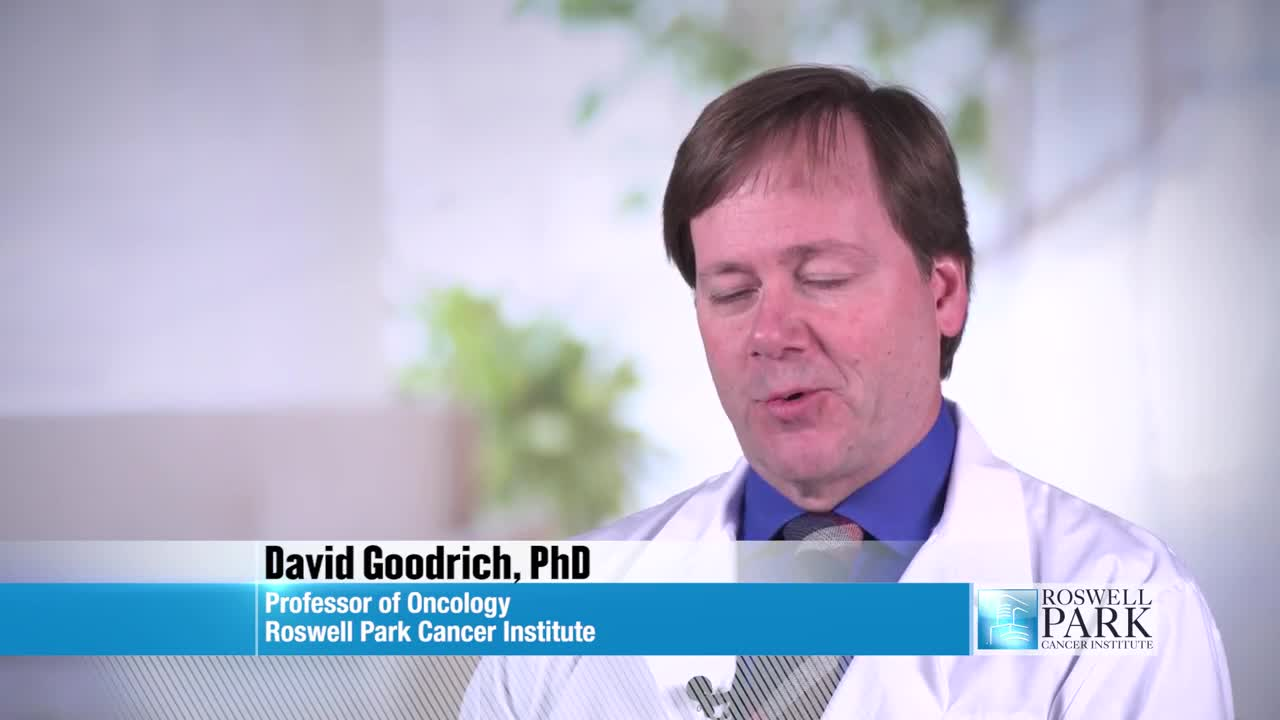 Improving Androgen-Deprivation Therapy for Prostate Cancer