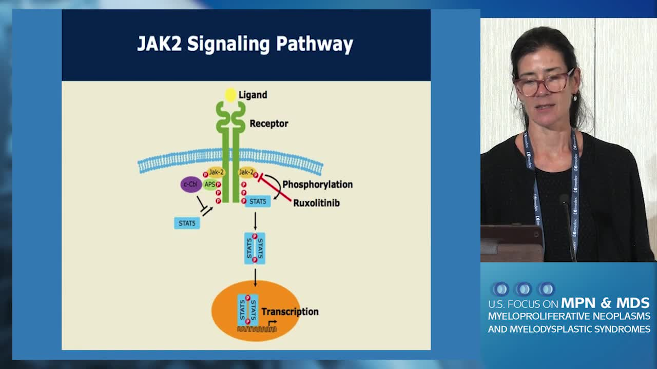 JAK Inhibitors for ET and PV: What Have We Learned So Far