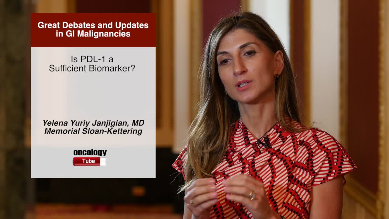 Is PDL-1 a Sufficient Biomarker?