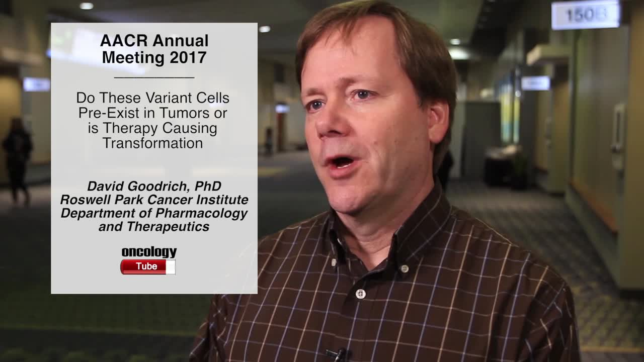 Do These Variant Cells Pre-Exist in Tumors or is Therapy Causing Transformation