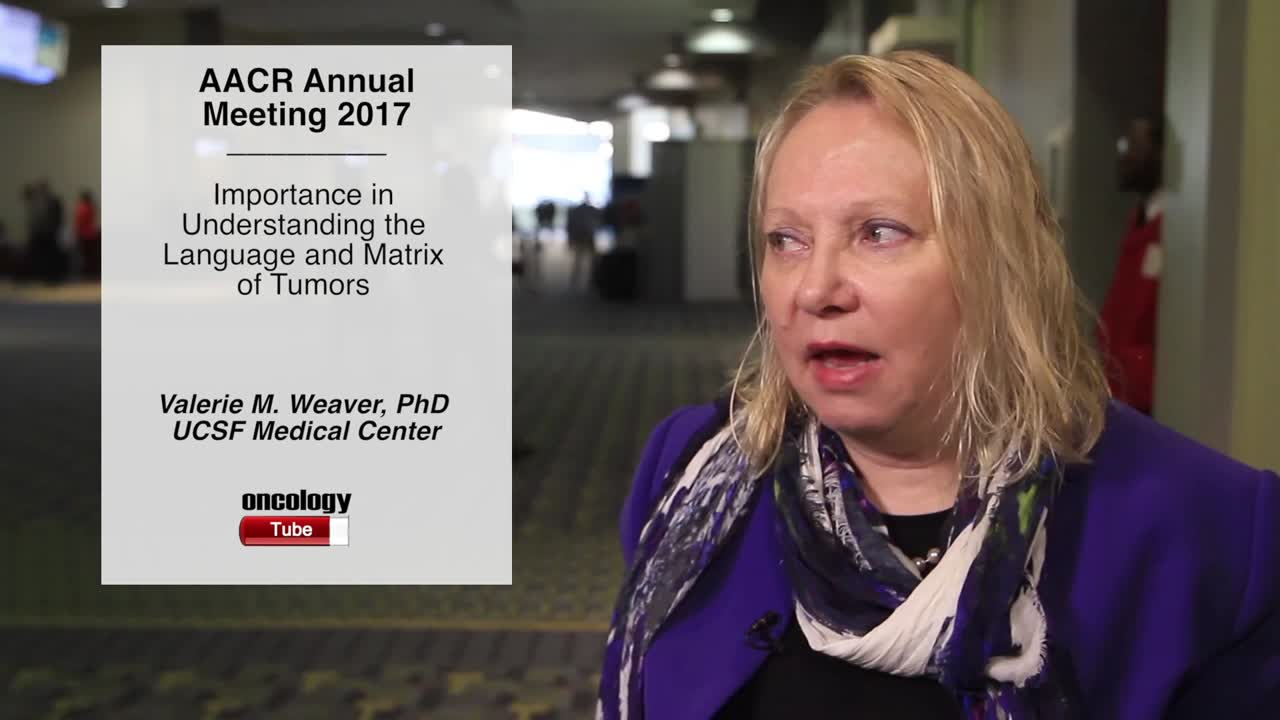 Importance in Understanding the Language and Matrix of Tumors