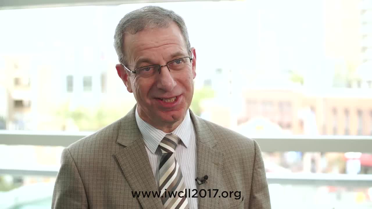 Looking forward to the 17th iwCLL meeting in New York, 12–15 May 2017