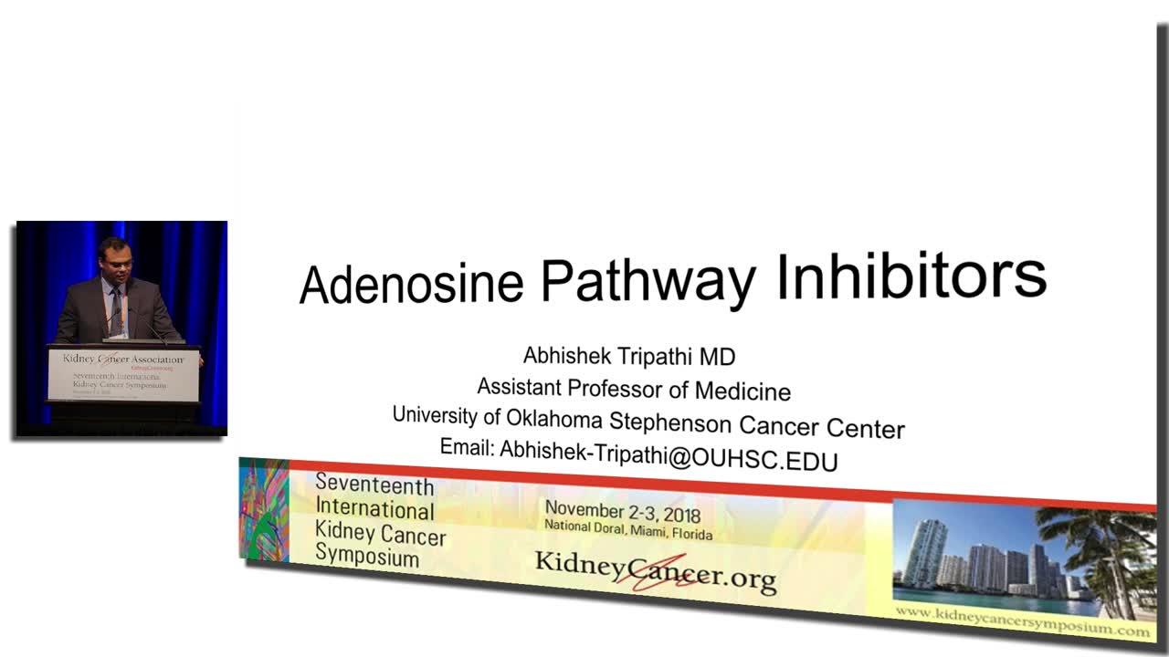 Adenosine Pathway Inhibitors