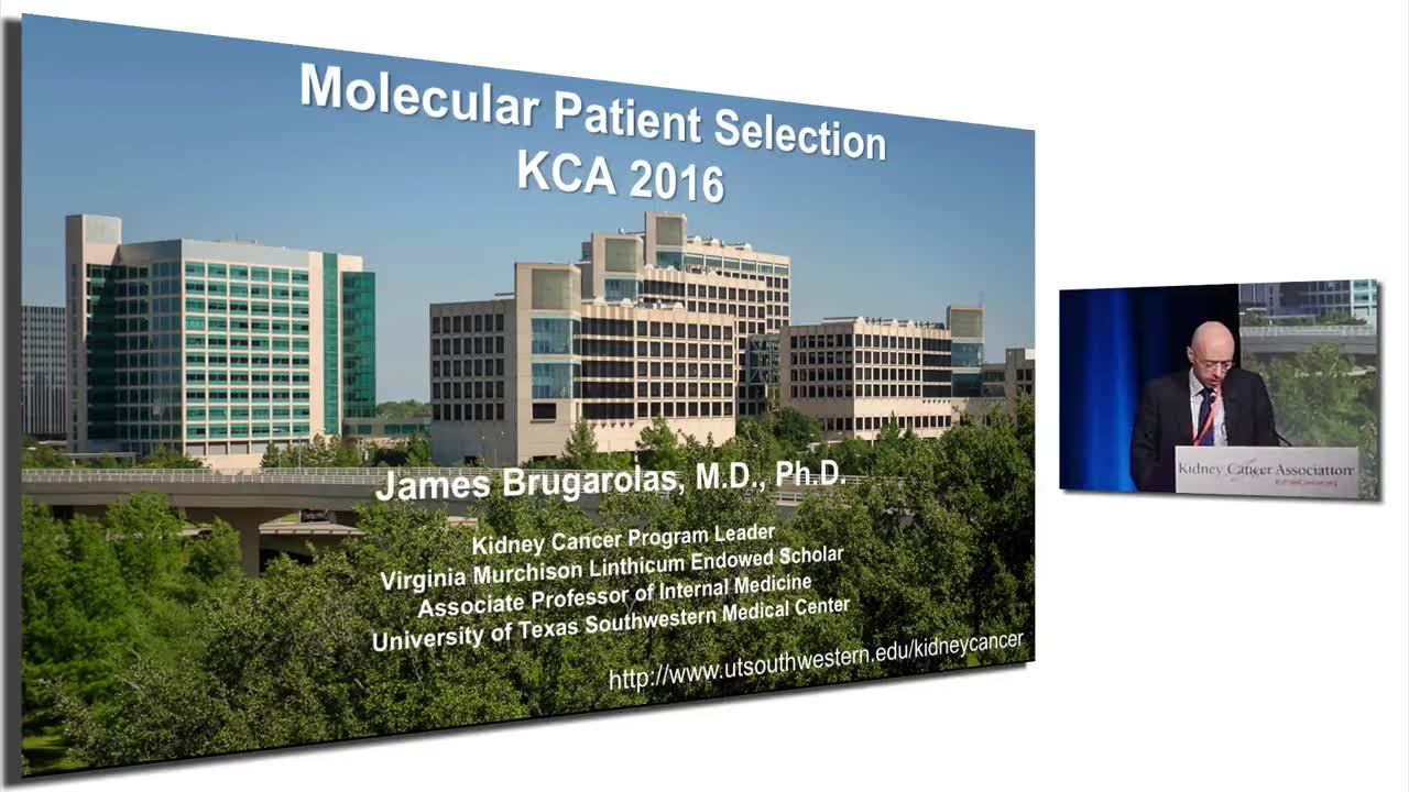 Molecular Patient Selection in Kidney Cancer