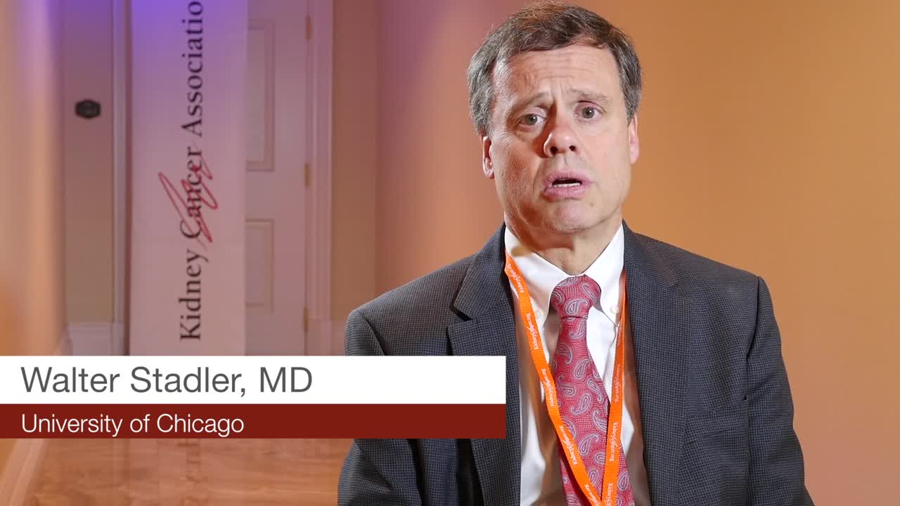 May Select Patients for VEGF or PD-1 Targeted Further investigation in other immunotherapies