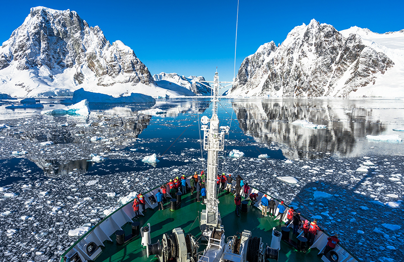 antarctic and arctic wildlife cruises one ocean expeditions