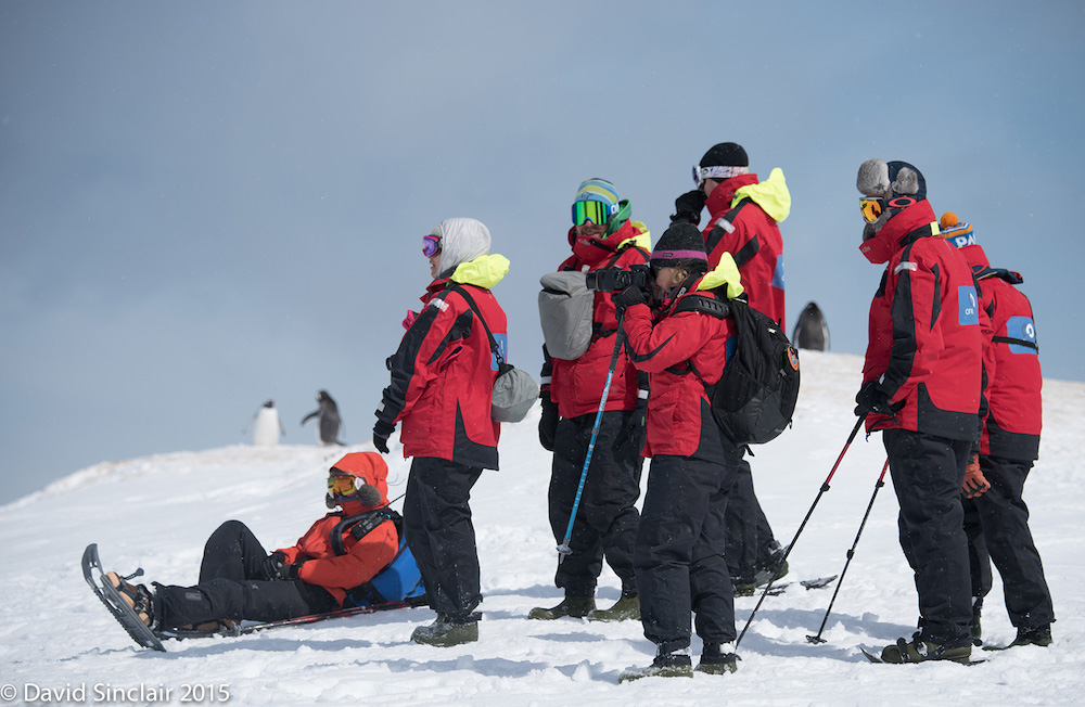 Passengers on a snowshoeing expedition in Antarctica while on a One Ocean Expeditions adventure cruise. Photo: David Sinclair