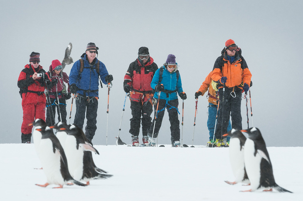 Passengers view penguins while on a snowshoeing expedition in Antarctica during a One Ocean Expeditions adventure cruise. Photo: Daisy Gilardini