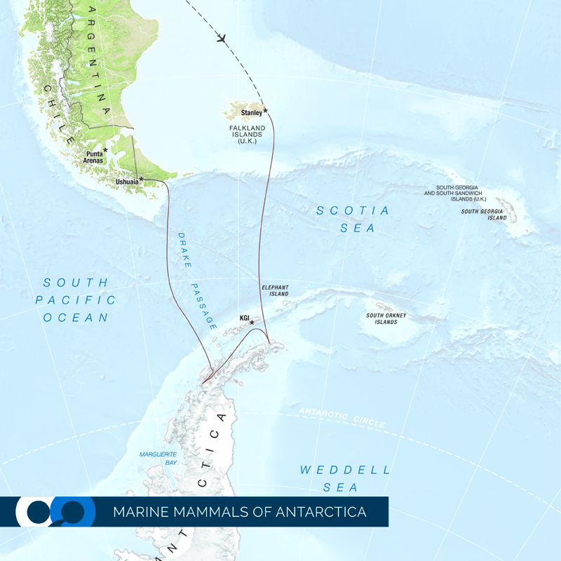 A map of the One Ocean Expeditions Marine Mammals in Antarctica travel package, a travel package which allows viewing of penguins, seals, and other Antarctic wildlife.