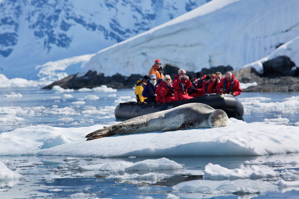 Wildlife viewing on Antarctic travel with One Ocean Expeditions. Photo: Ira Meyer