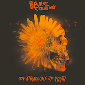Barns Courtney : The Attractions of Youth