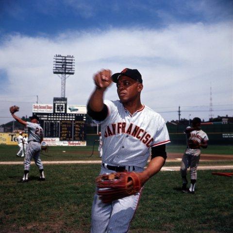 San Francisco Giants -