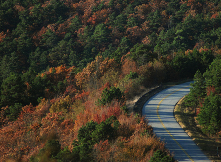 View southeastern Oklahoma's vibrant fall foliage with an autumn tour of the Talimena National Scenic Byway.