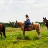 Arbuckle Trail Rides offers full and half day horseback rides.