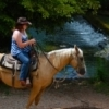 View Turner Falls Park in Davis while riding a registered American Quarter Horse.