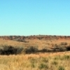 The hills surrounding the Washita Battlefield National Historic Site stand as silent sentinels.
