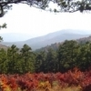A beautifully-framed fall view from the Talimena Skyline Drive near Talihina.