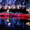 Chrismas lights bring Muskogee's Honor Heights Park alive with dazzling color each winter during the Garden of Lights celebration.