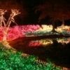 Muskogee's Garden of Lights celebration brings Honor Heights Park alive with color each December.