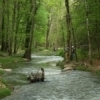 Lost Creek flows through Beavers Bend State Park offering great trout fishing and natural beauty for those who find it.