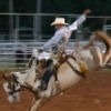 A cowboy takes his eight-second ride at the historic Elks Rodeo in Woodward that draws more than 20,000 spectators annually.