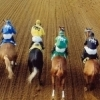 Jockeys create a colorful display as a horse race gets underway at Fair Meadows Racetrack in Tulsa.
