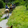 Arbuckle Trail Rides of Sulphur takes guests on horseback adventures through the ancient Arbuckle Mountain range in south-central Oklahoma.