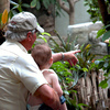 Venture into the tropics inside the Tropical American Rain Forest exhibit at the Tulsa Zoo.  You'll find plant and animal species native to the rainforests of Central and South America.