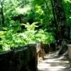 Heavener Runestone Park features a large stone with carvings believed to have been made by Vikings who visited the area.  The trail down to the runestone takes hikers through a beautiful, wooded canyon with steep rock walls.