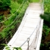 A swinging bridge helps hikers across a creek on the Ankle Express hiking trail at Greenleaf State Park in northeastern Oklahoma.