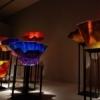 Fabulous works in glass by Dale Chihuly are on display at the Oklahoma City Museum of Art, home of the most comprehensive collection of Chihuly glass in the world.