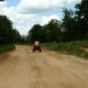 An ATV rider explores the 10 miles of marked trails available at the Lake Murray ATV area of Lake Murray State Park near Ardmore.