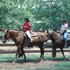 Horseback riding is a popular activity at The Lodge at Sequoyah State Park.