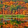 Radiant fall foliage dazzles on the shoreline and reflects on the surface of Clayton Lake State Park in Clayton.