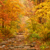 Amazing autumn colors electrify this serene creekbed trail in Beavers Bend State Park in Broken Bow.