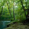 Rippling waters and lush woods create peaceful scenes like this one at Chickasaw National Recreation Area in Sulphur.