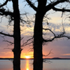 A colorful sunset on Lake Eufaula is framed by trees on the shoreline.