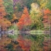 Fall colors reflect on still waters at Beavers Bend State Park near Broken Bow in southeastern Oklahoma.