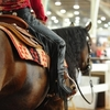 A competitor prepares to enter the ring at the NRHA Futurity & Adequan Championship Show in Oklahoma City.  Oklahoma City is known as the Horse Show Capital of the World.
