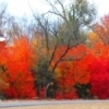 Brilliant fall foliage brightens the walking trail at Field Station Lake in Woodward.