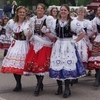 The Prague Kolache Festival celebrates the area's Czech heritage with bright costumes, dancing, a parade and thousands of tasty kolaches.