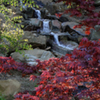 A waterfall in the gardens at Honor Heights Park in Muskogee is framed by colorful foliage.