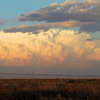 A thunderstorm builds in the wide-open plains of the Oklahoma panhandle near Guymon.